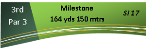 3th Hole - Milestone